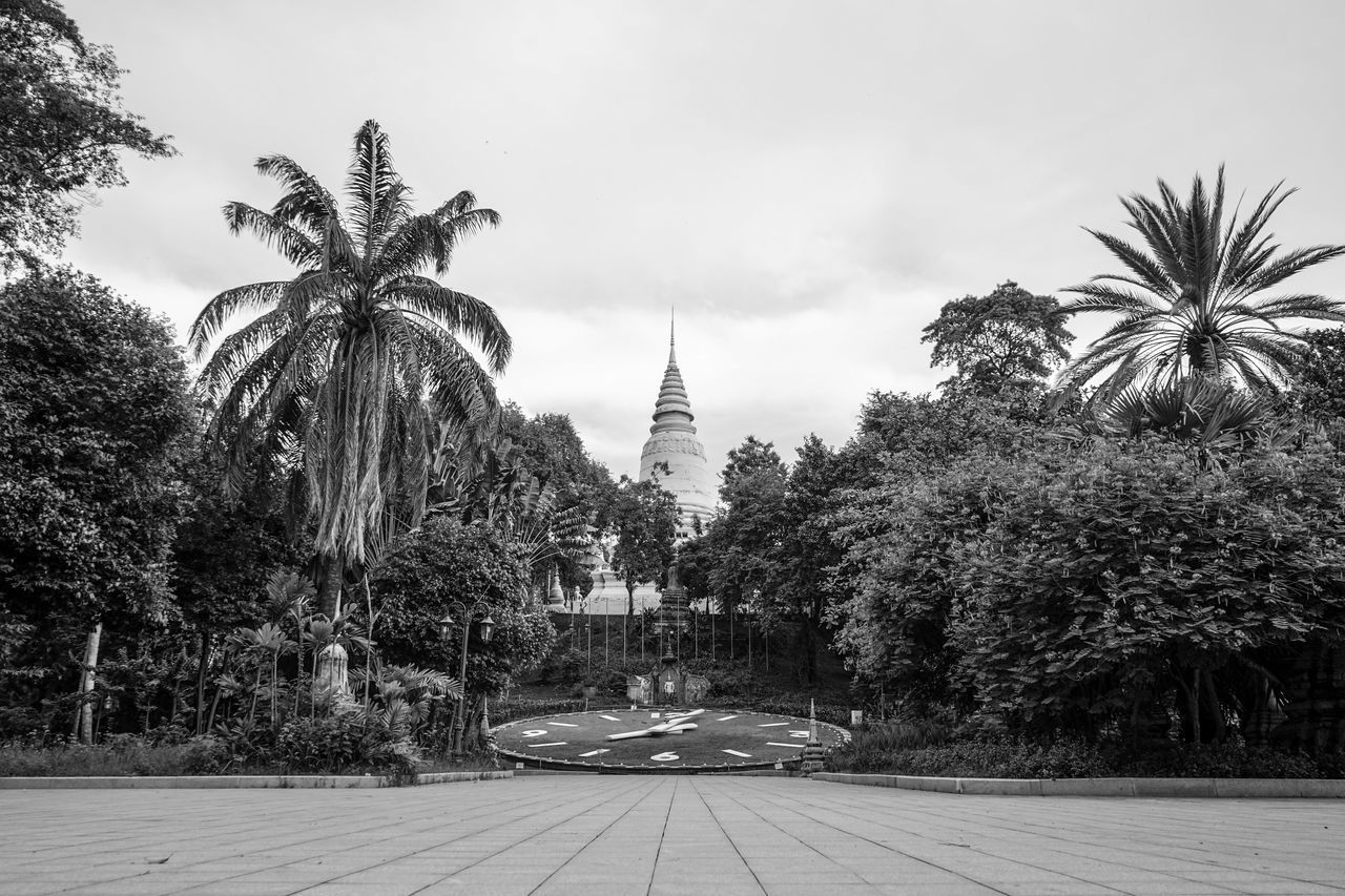 Architecture Blackandwhite Cambodia City Day Freshness Grey Monochrome No People Outdoors Palm Tree Phnom Phnom Penh Sky Travel Destinations Tree