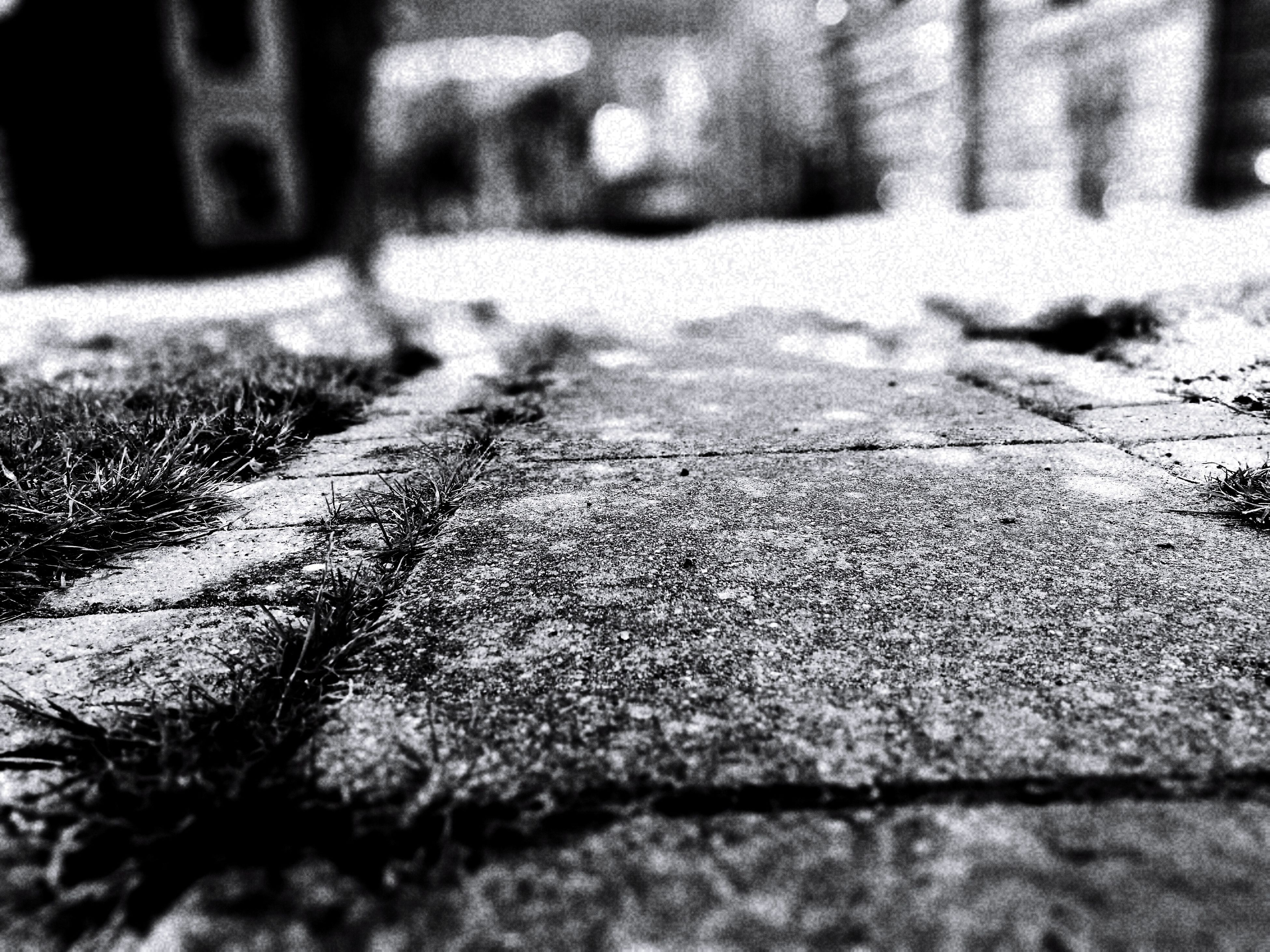 day, selective focus, outdoors, no people, textured, close-up, shadow, nature, built structure, architecture, building exterior