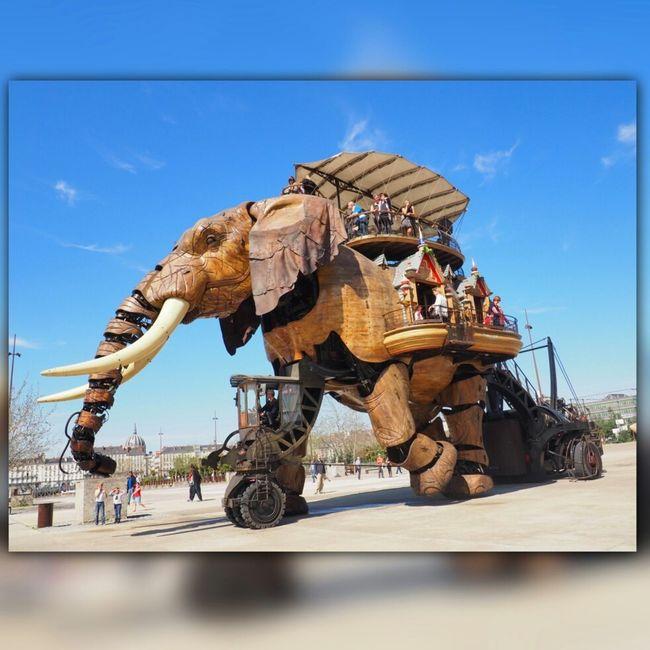 Nantes Le Voyage à Nantes Elephant Machinesdelile Galeriedesmachines Make Magic Happen