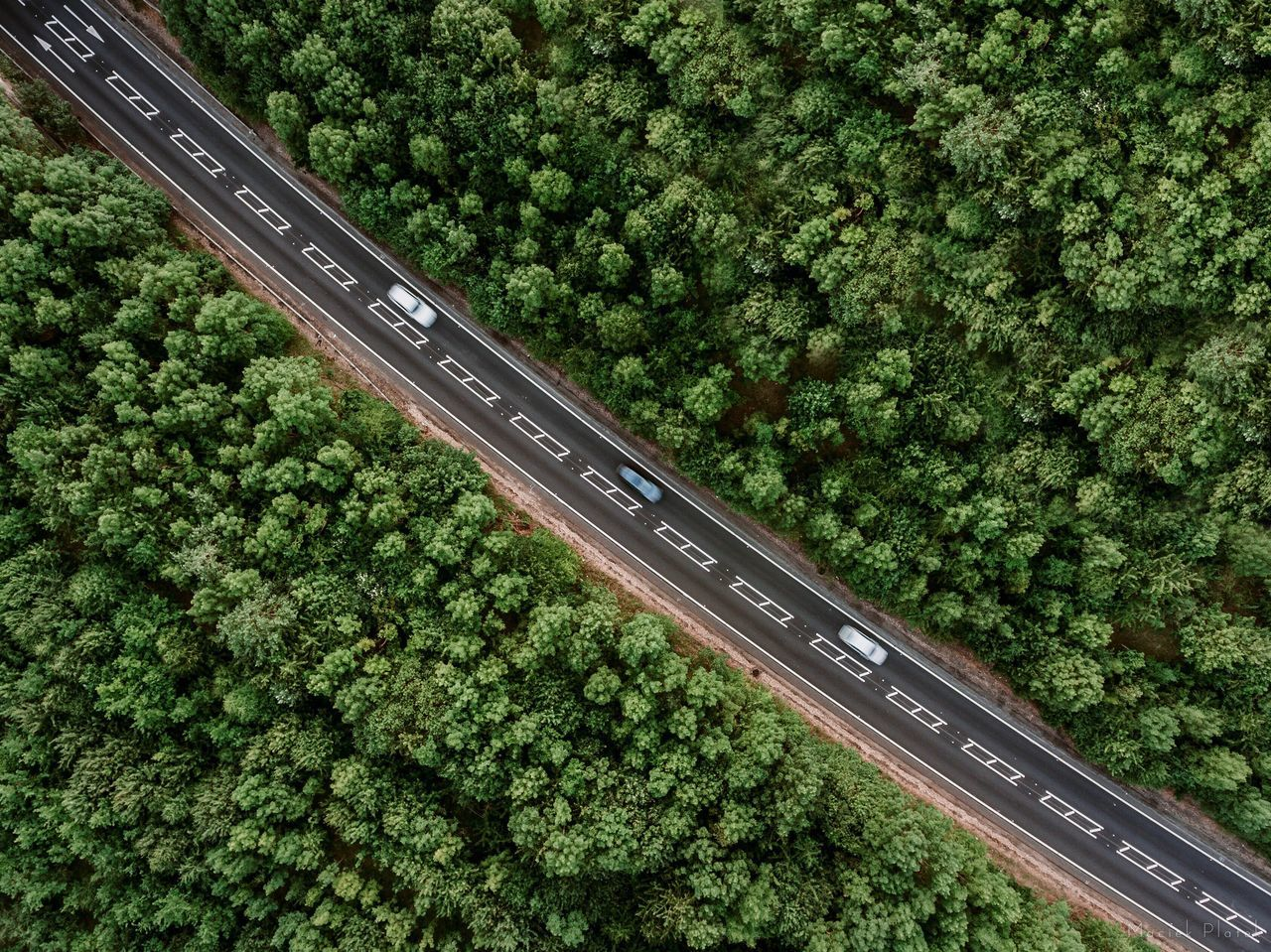 In Line Green Color Transportation No People High Angle View Day Outdoors Tree Growth Nature Aerial View Highway Car Symmetry Perfect Drone