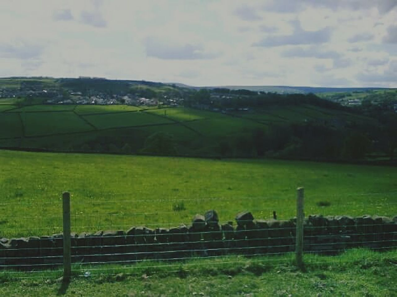 farm, agriculture, field, rural scene, landscape, livestock, domestic animals, nature, animal themes, scenics, sky, beauty in nature, cloud - sky, no people, grazing, day, tranquil scene, paddock, outdoors, sheep, grass, mammal, farmhouse