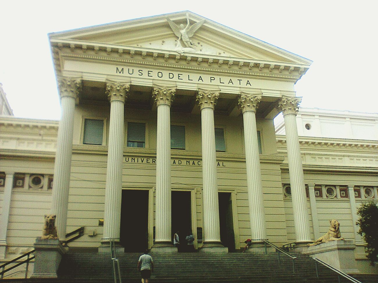 La Plata's museum. December 2014. Holidays Tourist Attraction  Tourism Argentina Tourism Study Architecture History Natural History Museum Theory