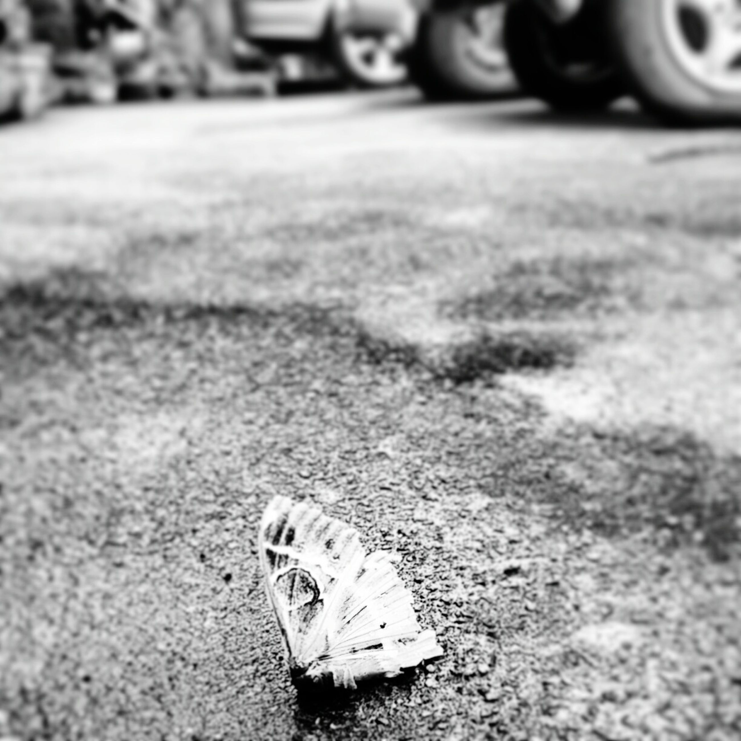 transportation, focus on foreground, selective focus, land vehicle, close-up, mode of transport, shoe, street, part of, bicycle, outdoors, field, road, day, wheel, one person, grass, single object, tire, car