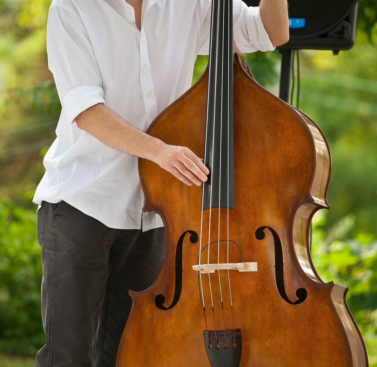 Beautiful stock photos of artist, Artist, Arts Culture And Entertainment, Bass Instrument, Casual Clothing