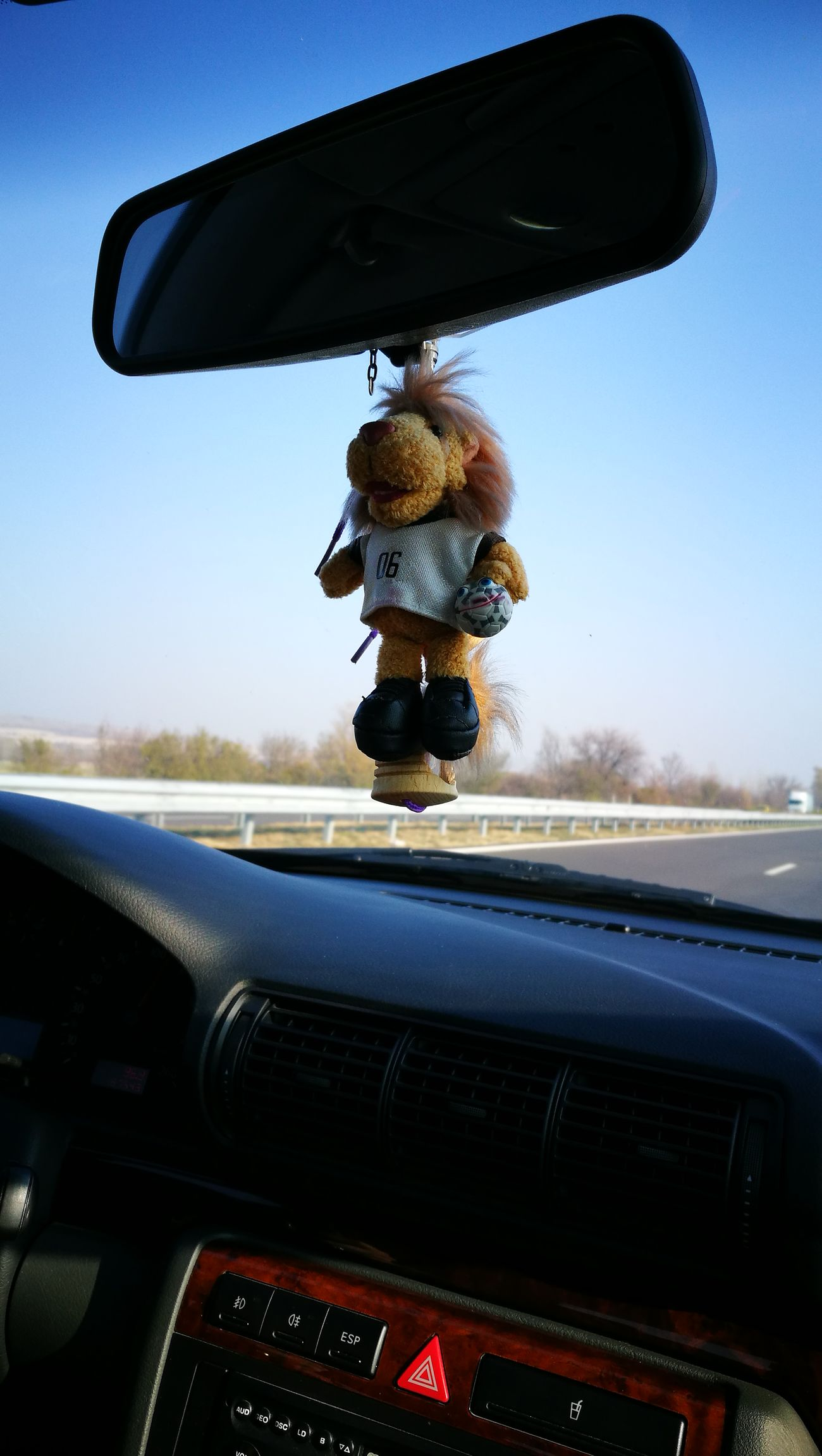 Huawei P9 Leica Funny Toys Toyphotography Taking Photos Traveling Enjoying Life Driving Around Drive