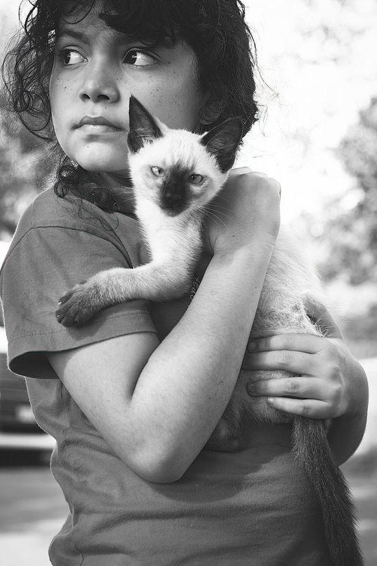 B&n Fotografia Bokeh Photography Cats Children's Portraits Felinos GatosFelices Miradas Felina Retratos Urbanos
