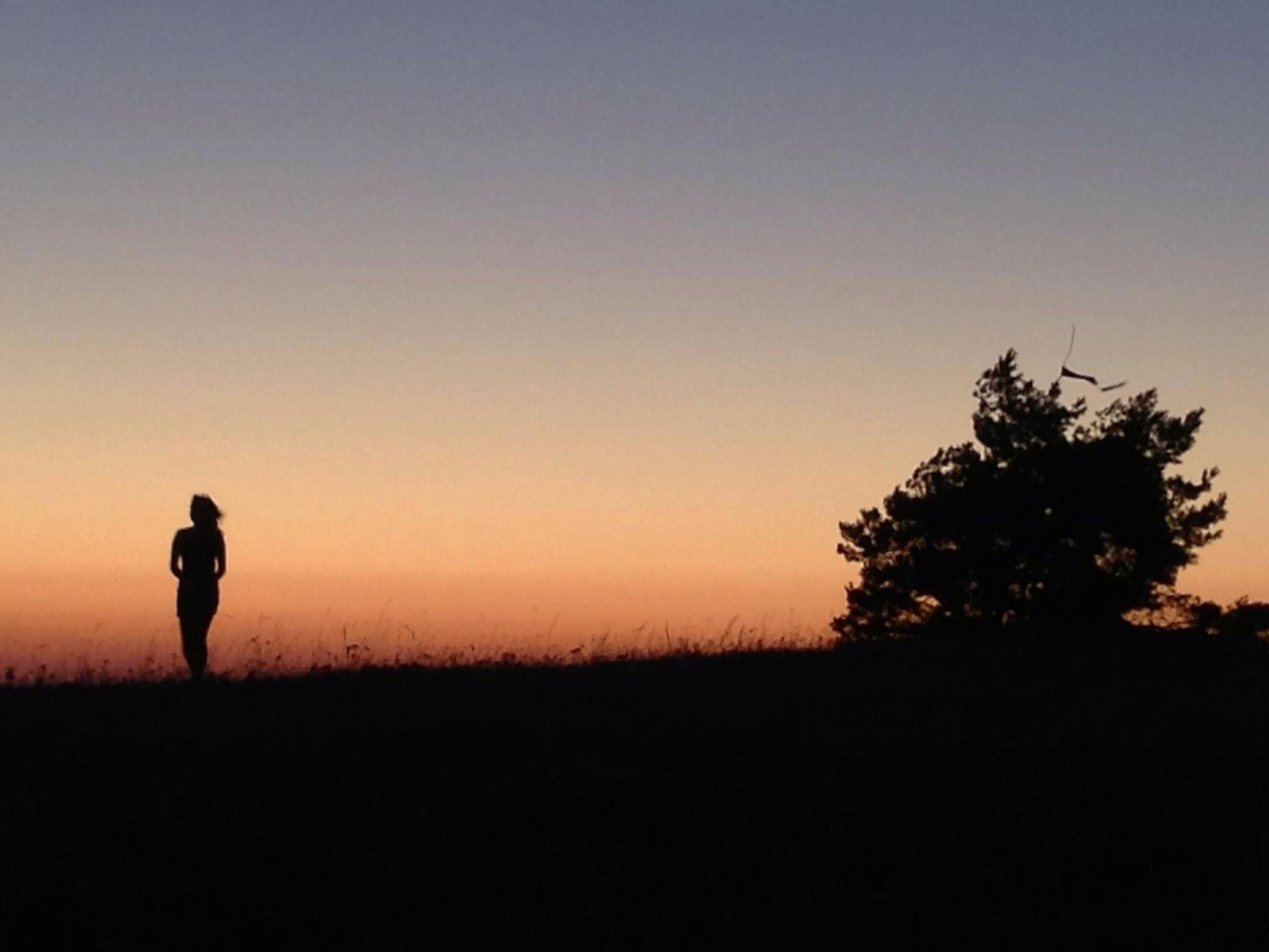 Landscape Sunset Silhouette That's Me ☀️?