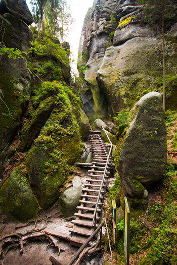 Adršpach Adršpachské Skály Beauty In Nature Day Mountain Nature No People Outdoors Rock - Object Tree
