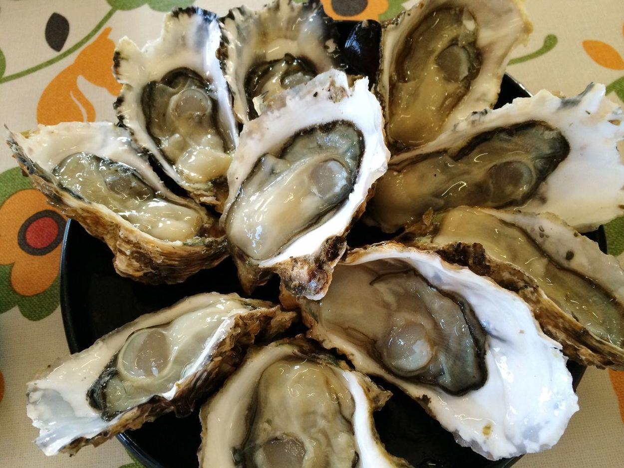 牡蠣 オイスター 三重県 三重 鳥羽 浦村 Oyster  Mie-ken Mie Toba Uramura Raw Oysters 生牡蠣 Japanese Food Food Photography Foodphotography Food Seafoods SEAFOOD🐡