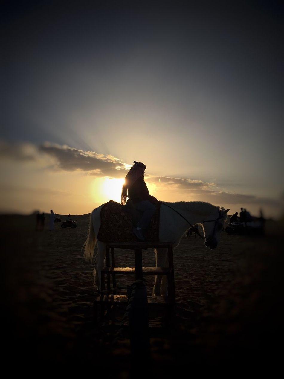 Every picture has a story to tell Mydubai Dubai❤ EyeEmBestPics Cityscapes Eyemphotography EyeEm Best Shots IPhoneography Snapseed EyeEm Gallery Landscape #Nature #photography Beautiful Naturelovers Dayphoto Silhouette Outdoors Sunset Dessert Hatta Dubai