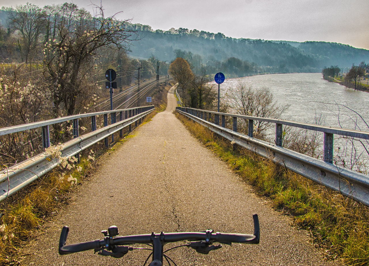 Railing Tree Outdoors Beauty In Nature The Way Forward Nature Moselle Bike Ride Bikeride Biketour