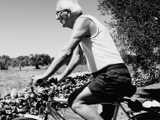 Blackandwhite Blackandwhite Photography Black & White Olive Tree Sky And Nature Taking Photos Salento Puglia South Italy Puglia Hello World Sunny Day Bicicletta Bycicle Bycicle Lovers Stones Stoneswalls
