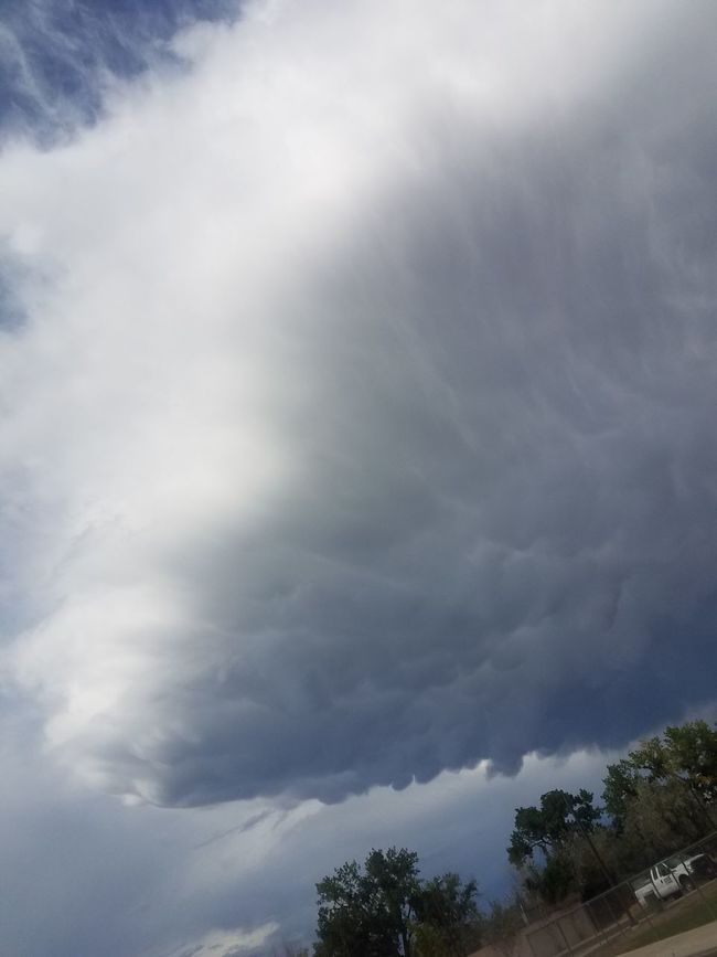 Tree No People Cloud - Sky Outdoors Day Nature Storm Cloud Beauty In Nature Sky Cloudscapes Rollingthunder NewMexicoSky