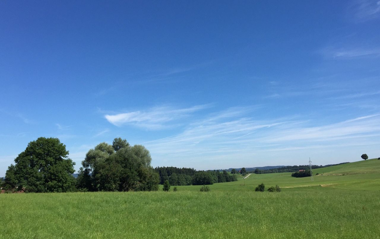 Summer... Taking Photos The Purist (no Edit, No Filter) Summer Time  Allgäu