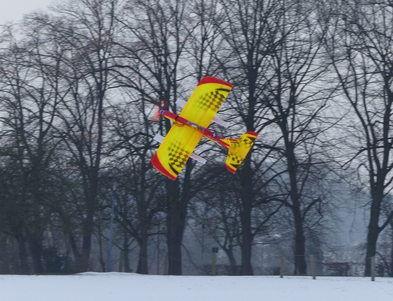Winter Snow Tree Bare Tree Cold Temperature Nature Outdoors Snowing RC Modelplane Plane Aircraft Adrenaline Junkie Adrenalin