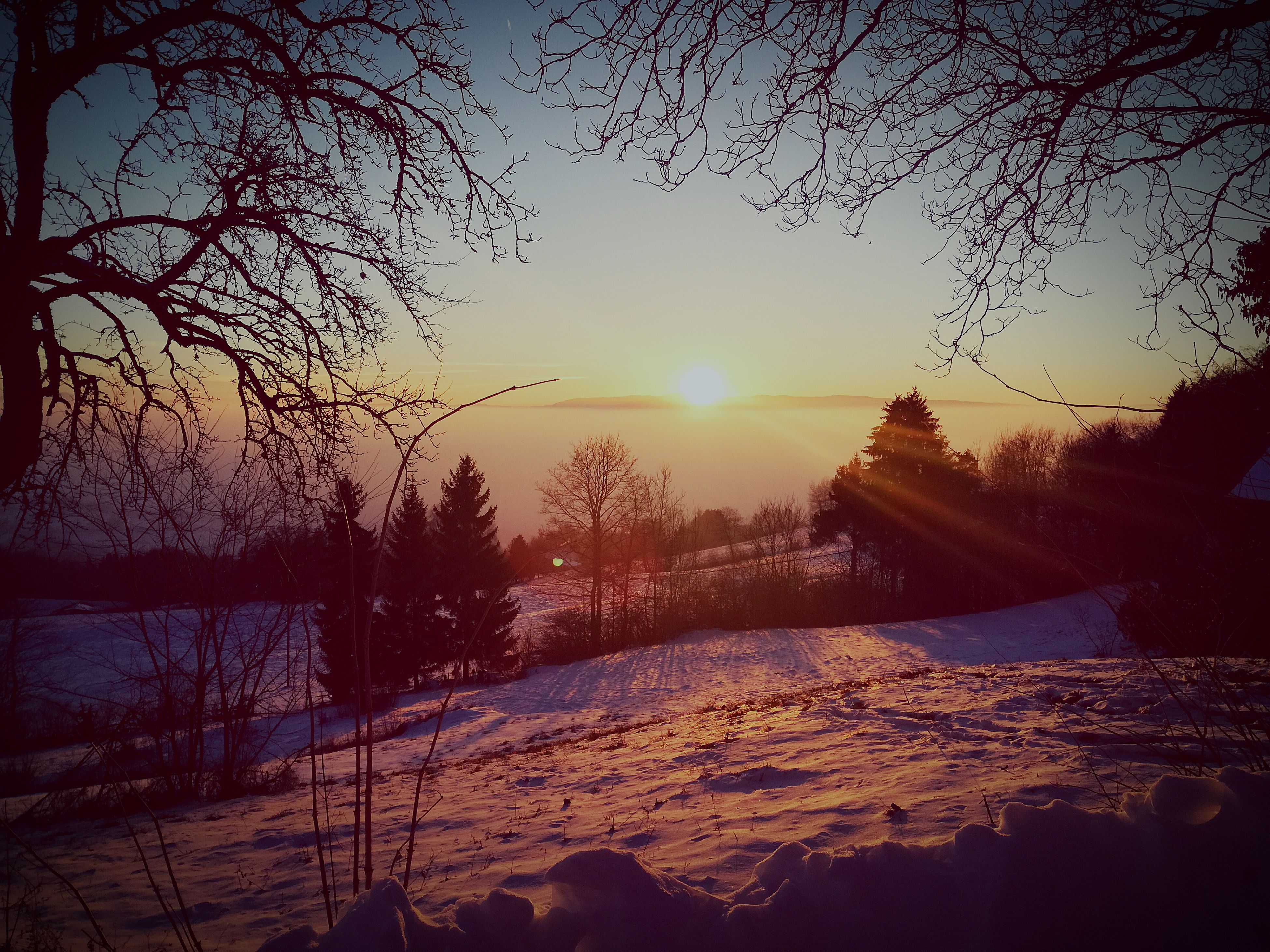 sunset, nature, beauty in nature, scenics, sky, sun, tranquil scene, water, tranquility, reflection, tree, idyllic, no people, sunlight, outdoors, silhouette, cold temperature, landscape, day