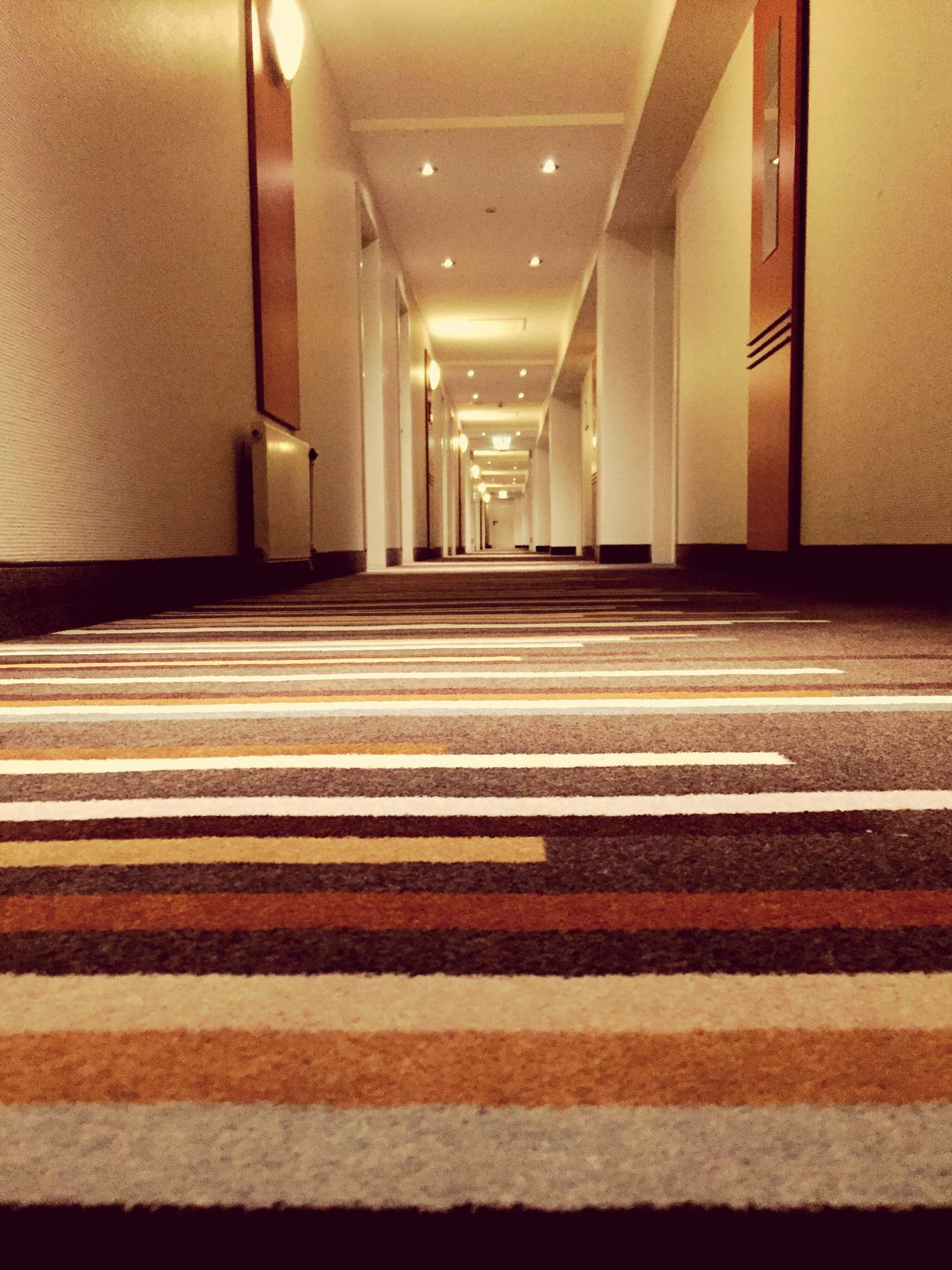 Backgrounds Carpet Indoors  Architecture No People Hotel Doors Colors Perspective Architecture Indoors  Goodnight Stripes Pattern Lookingup Lights Stripes Everywhere