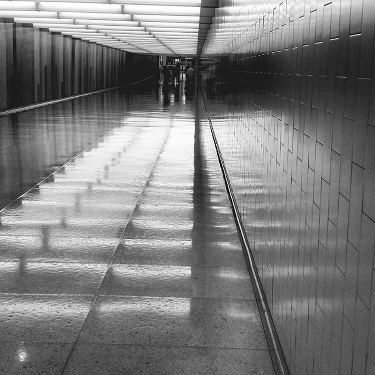 ✈La Cali Tunnel Terminal LAX Blackandwhite Blackandwhitephotography Bnw Bnw_globe Bnw_rose Bnw_captures Bnw_life Bnw_planet Bnw_society Bnw_LA Bnw_california Bnw_travel Bnw_photo Bnw_city Travel Perspective Architecture Nikon D3300