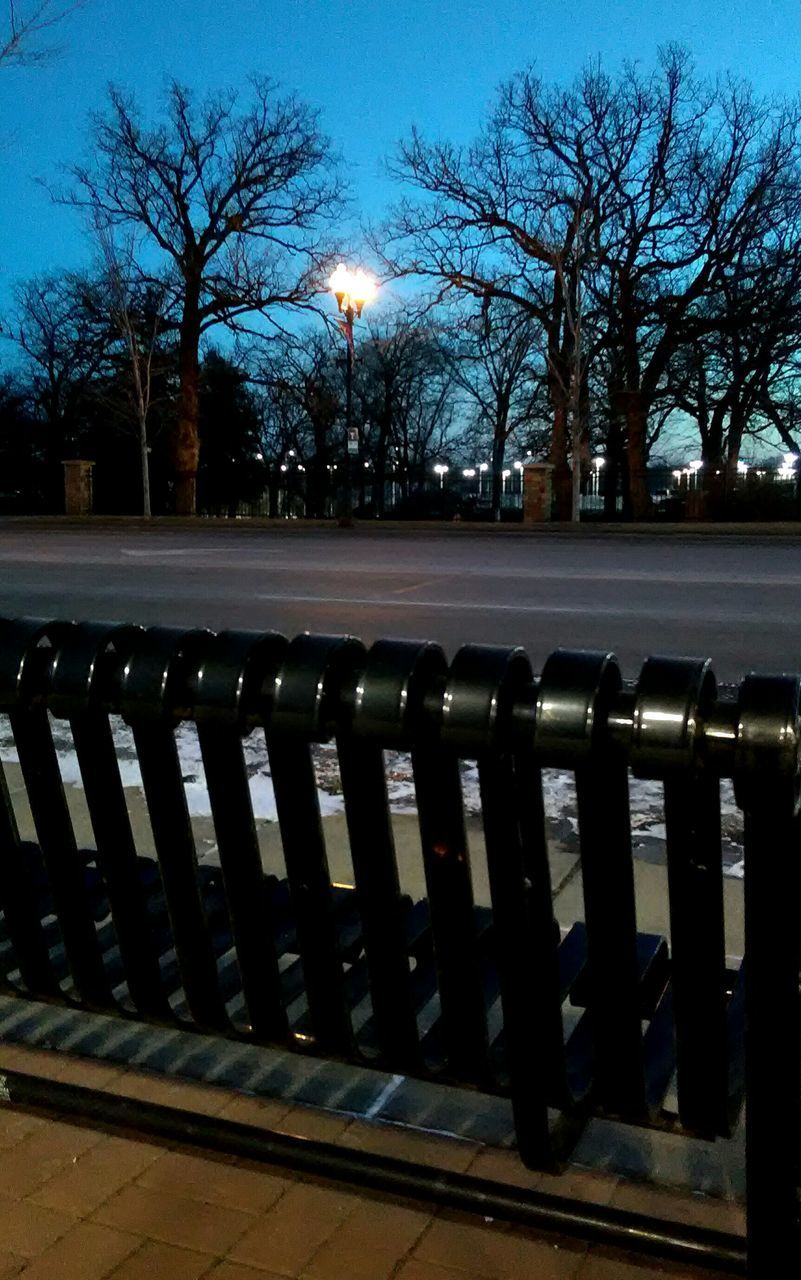 tree, in a row, railing, outdoors, bare tree, street light, no people, sky, day