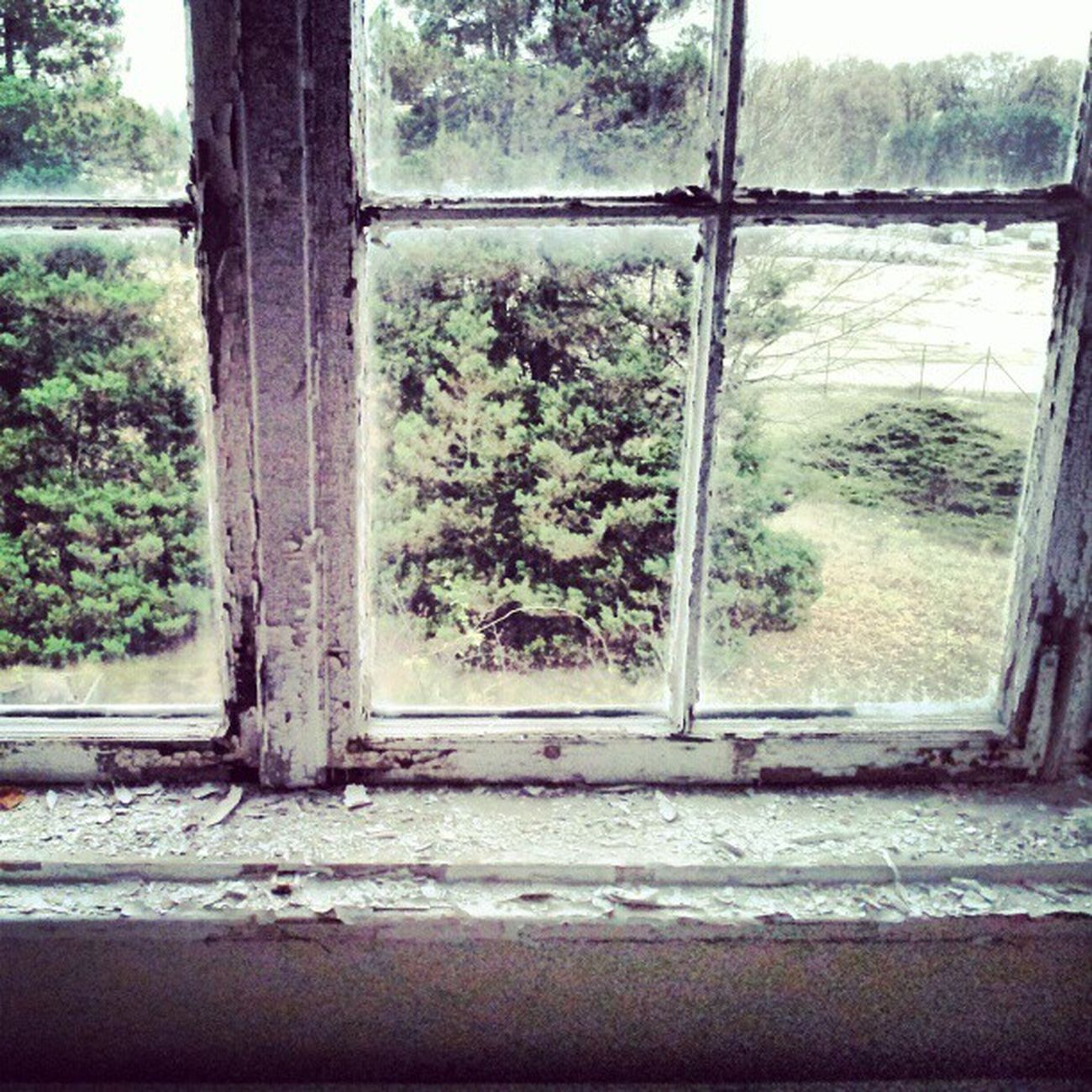 #urbex #lostinplace #window Urbex Lostinplace Photooftheday Beautifuldecay Partnersingrime Organisedgrime Filthyfeeds Instaart Grime Urbanexploration Findingbeautyoutofshit Lostplaces Light Filthyfamily Abandoned Urbanex Derelict Grimewindow Window Creepywindowsunday Color Sfx_urbex Decay Lostplace Rotten Detailsofdecay Dark Beautymess