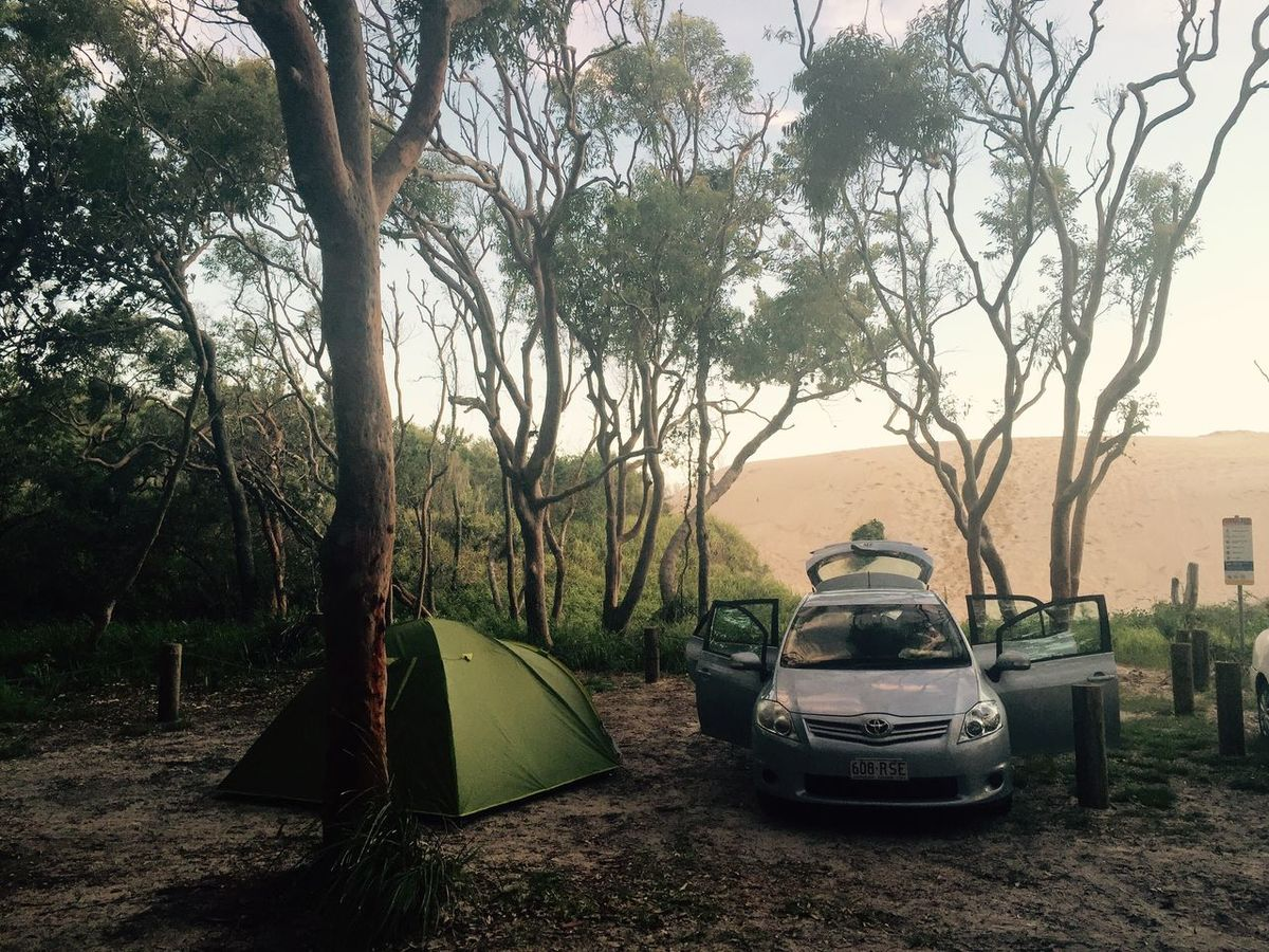 Roadtrip New South Wales  Australia Dune Sand Outdoors Tent Day Landscape No People Grass Branch