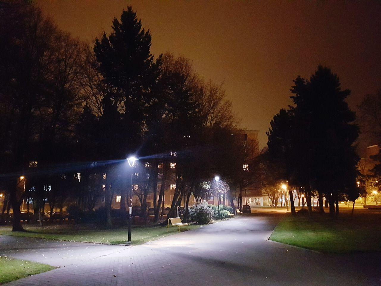 Tree Night No People Social Issues City Outdoors Sky Plaza Ostrava Czech Republic🇨🇿 City Night Park Night Lights Tree Park