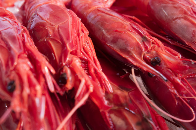Close Up Color Palette Crayfish Fish Food Food And Drink Full Frame Market Market Stall Red Seafood Shell Street Market