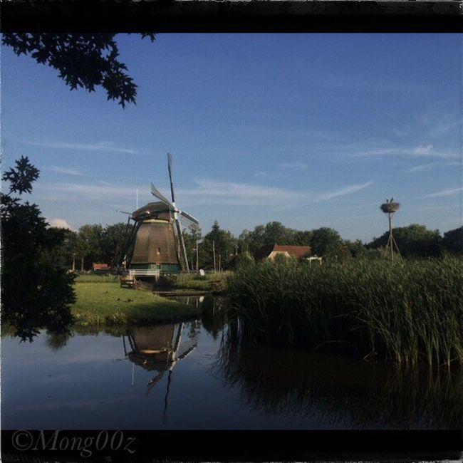 Holland Windmill Historic Landscape Urban Nature Dutch Reflection Water Storknest