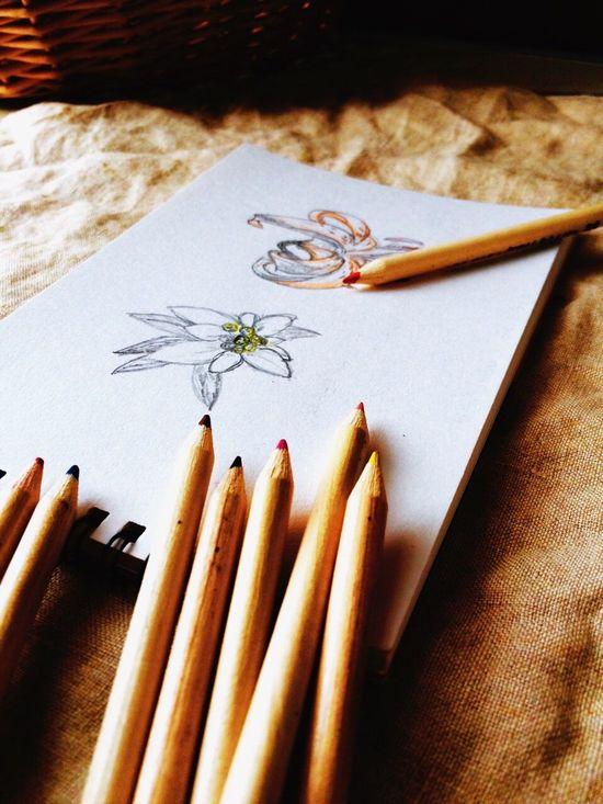 Taking Photos Stationery Enjoying Life Art Colors ArtWork