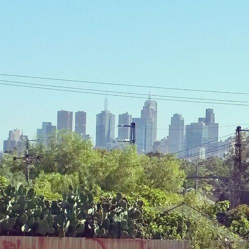 Melbourne Wpphoto