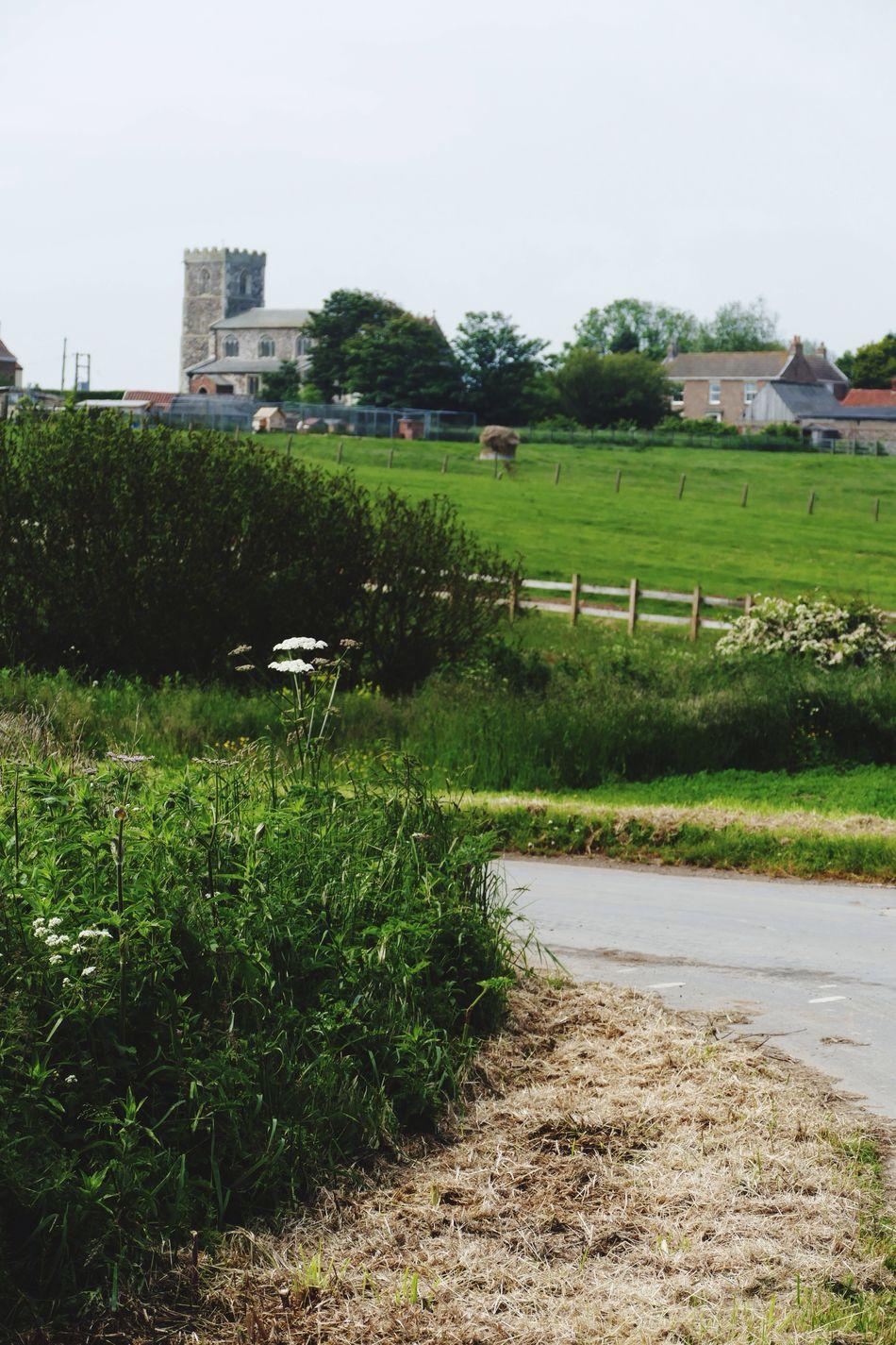 Landscape Landscape_Collection Landscape_photography Church Tunstall East Yorkshire LUMIX DMC FZ1000