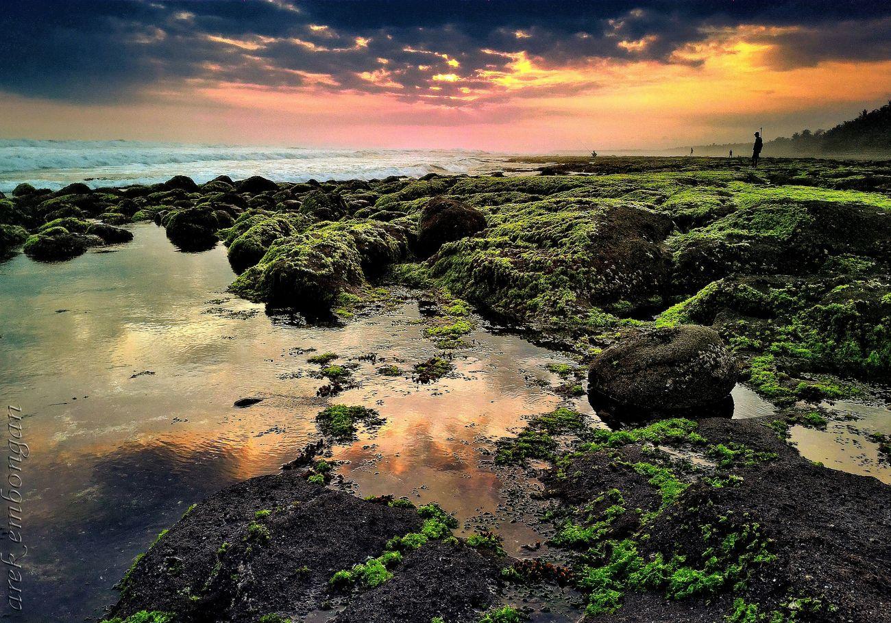 Sunset Landscape, Seascape, Peggy's Cove, Peaceful Landscape_Collection Urban Landscape Nature And Lanscapes Lanscape_Collection  Sunset Silhouettes Lanscape Photography Lanscape #trees #sunset #wood #winter #sky Landscape