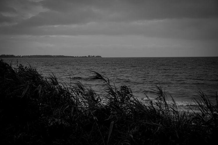 Sea Horizon Over Water Seascape Seaside Grey Day Black & White Blackandwhite Black And White Nature No People Sky