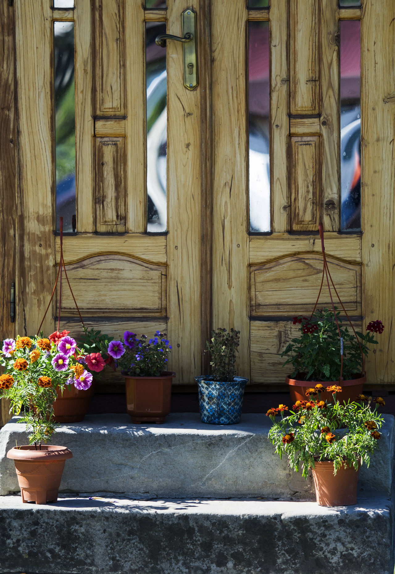Pots of blooming flowers on the doorstep Architecture Blooming Blossom Bouquet Building Exterior Built Structure Day Decoration Doorstep Flower Flower Pot Flower Shop Flowers Fragility Freshness Growth Houseplant In Bloom In Front Of Multi Colored Outdoors Plant Potted Plant Vacations Wildflower
