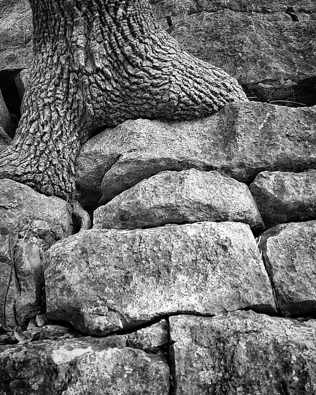 rock - object, no people, day, outdoors, textured, nature, full frame, backgrounds, close-up