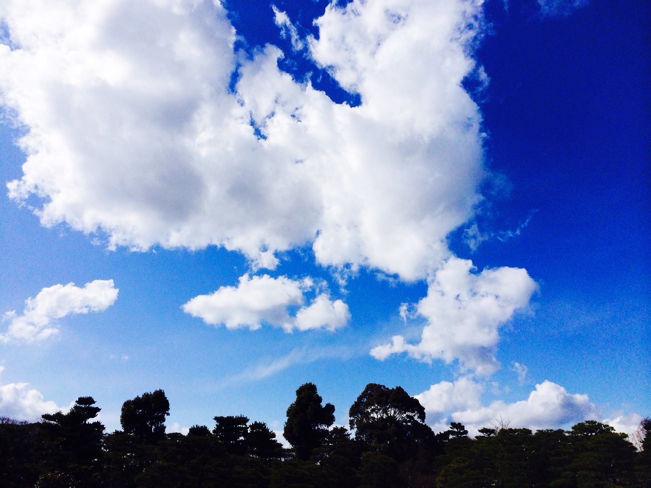 Beautiful sky with clouds. Sky Clouds Kyouto Nijo Castle