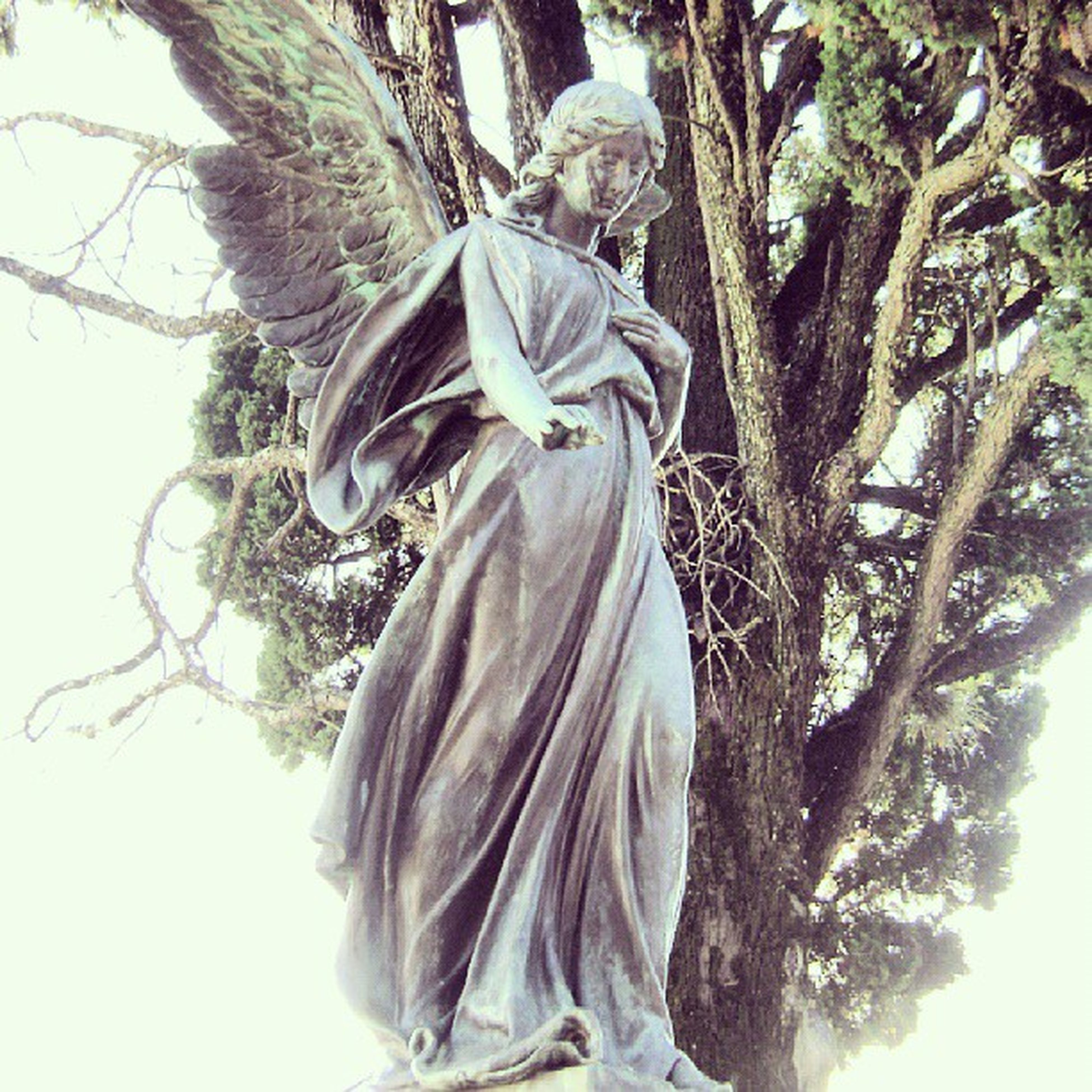 statue, sculpture, human representation, tree, art, low angle view, art and craft, creativity, day, outdoors, religion, white color, sky, growth, park - man made space, nature, winter