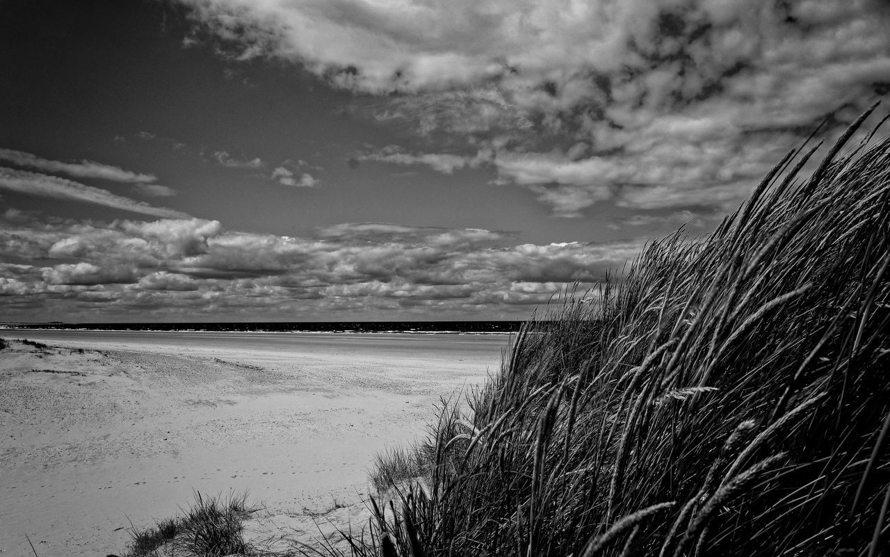 By the Dunes. Holkham beach on the longest day. Nikon Coolpix A with edit in Lightroom, DXO pro 10 and silver efex pro 2. Cloudporn Landscape_photography Eye4photography  Eyem Best Shots Blackandwhite Monochrome Holkham Beachphotography