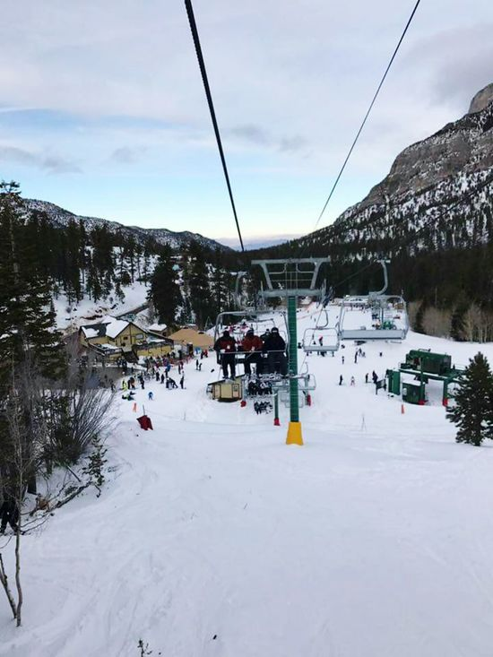 Snow Winter Cold Temperature Sky Tree Nature Landscape Outdoors Cloud - Sky Beauty In Nature Ski Lift Day Mountain Vacations Scenics Overhead Cable Car People