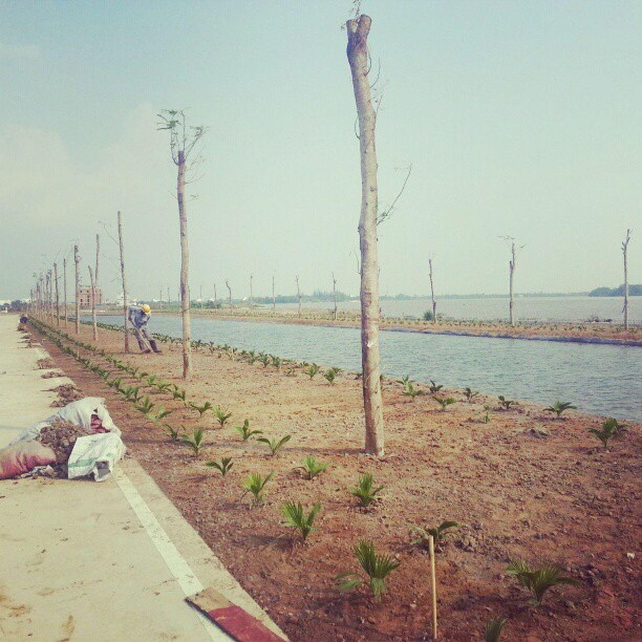 ¥_¥ Marinasaigonvilla Hcmc Saigon Marina villa 15 vietnam daokimcuong