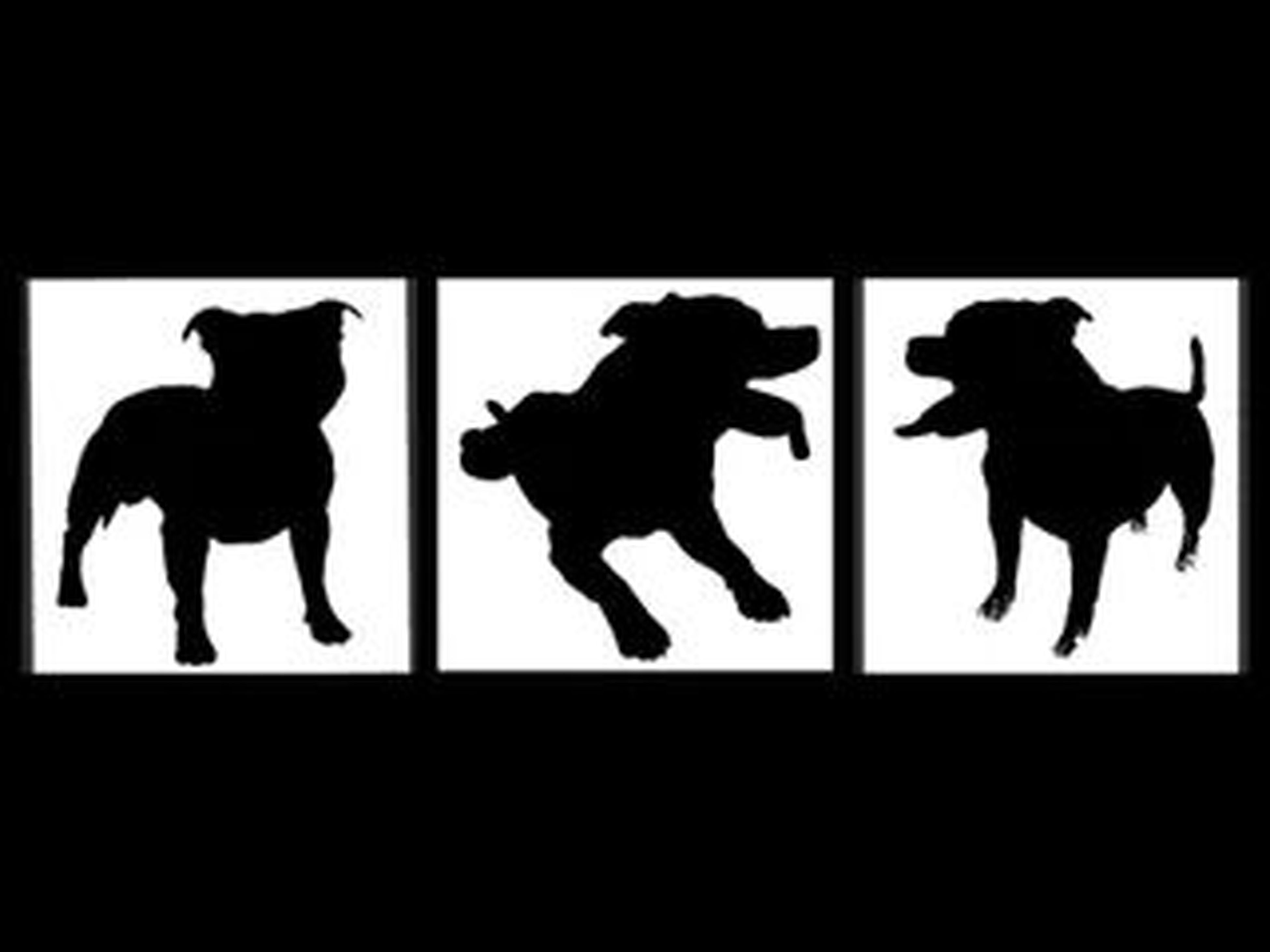 My Dogs In Silouette Staffordshire Bull Terrier Silouette