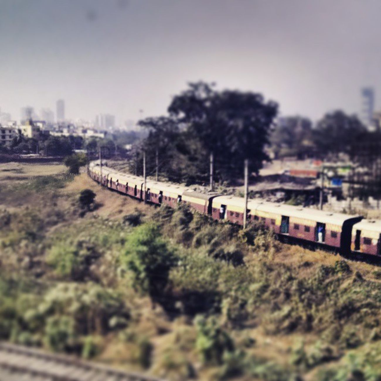 The lines that connect the dots in this massive city, the Mumbai Local. Mumbailocaltrain Westernrailways Mumbai Bombay train station centipede everydaymumbai