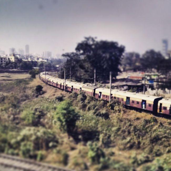 The lines that connect the dots in this massive city, the Mumbai Local. Mumbailocaltrain Westernrailways Mumbai Bombay train station centipede everydaymumbai