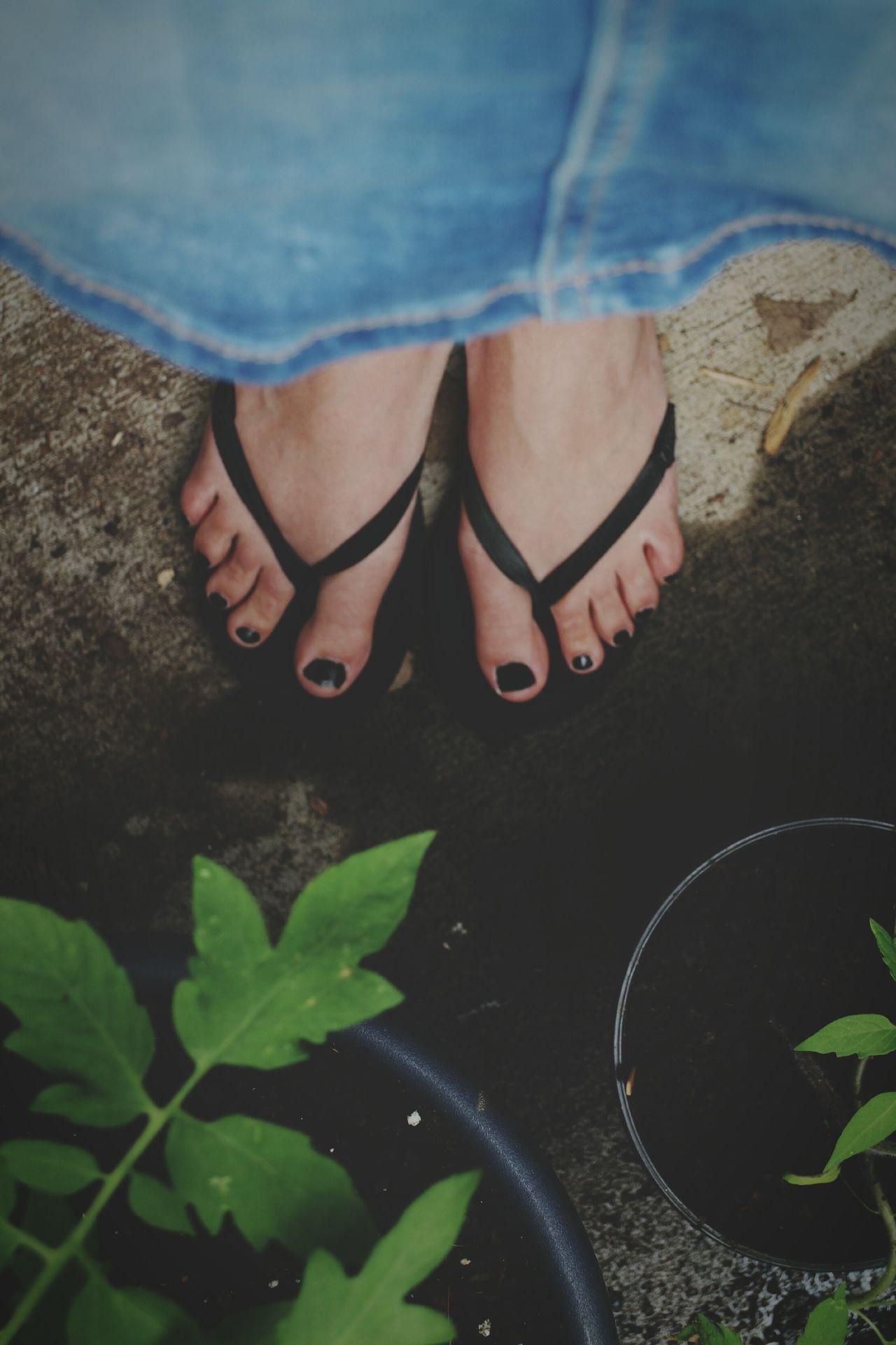 Gardening Container Gardening Tomatoes Feet Selfie
