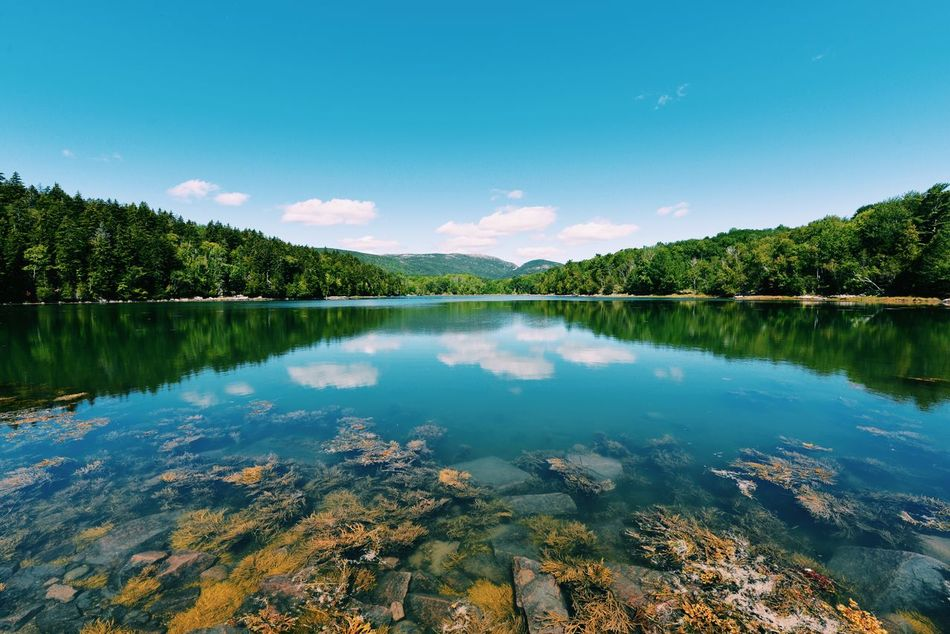 Reflections Taking Photos Nature Relaxing Lake EyeEm Nature Lover Nature_collection Enjoying The View Check This Out Sunshine