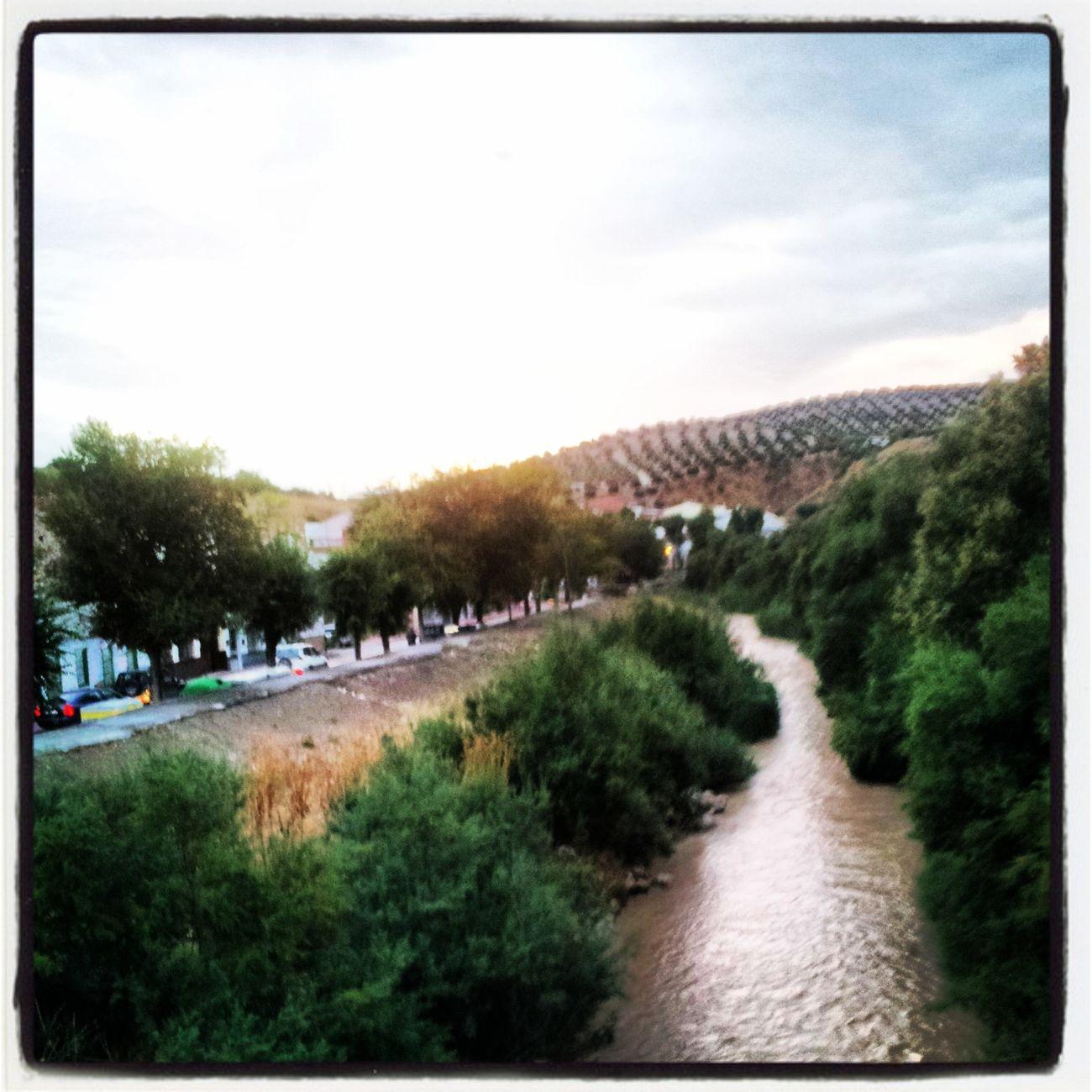El Rio Viboras