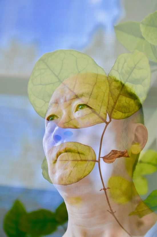 Close-up Double Exposure Face Of Man Green Color Leaf Leaf Vein Leafs Photography Leafs 🍃 Leaves And Face Man's Pose Portrait Of A Man  Reflections Self Portrait Mix Yourself A Good Time