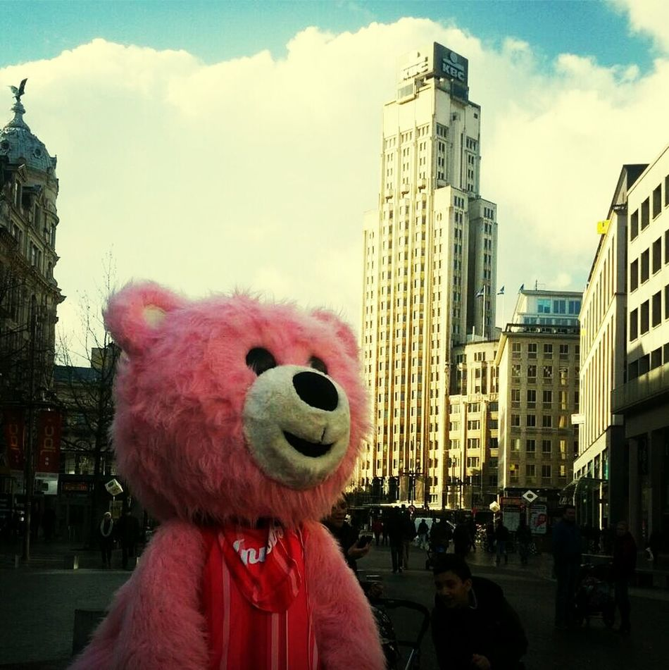 Beautiful stock photos of teddy bear, Antwerpen, Architecture, Belgium, Building Exterior
