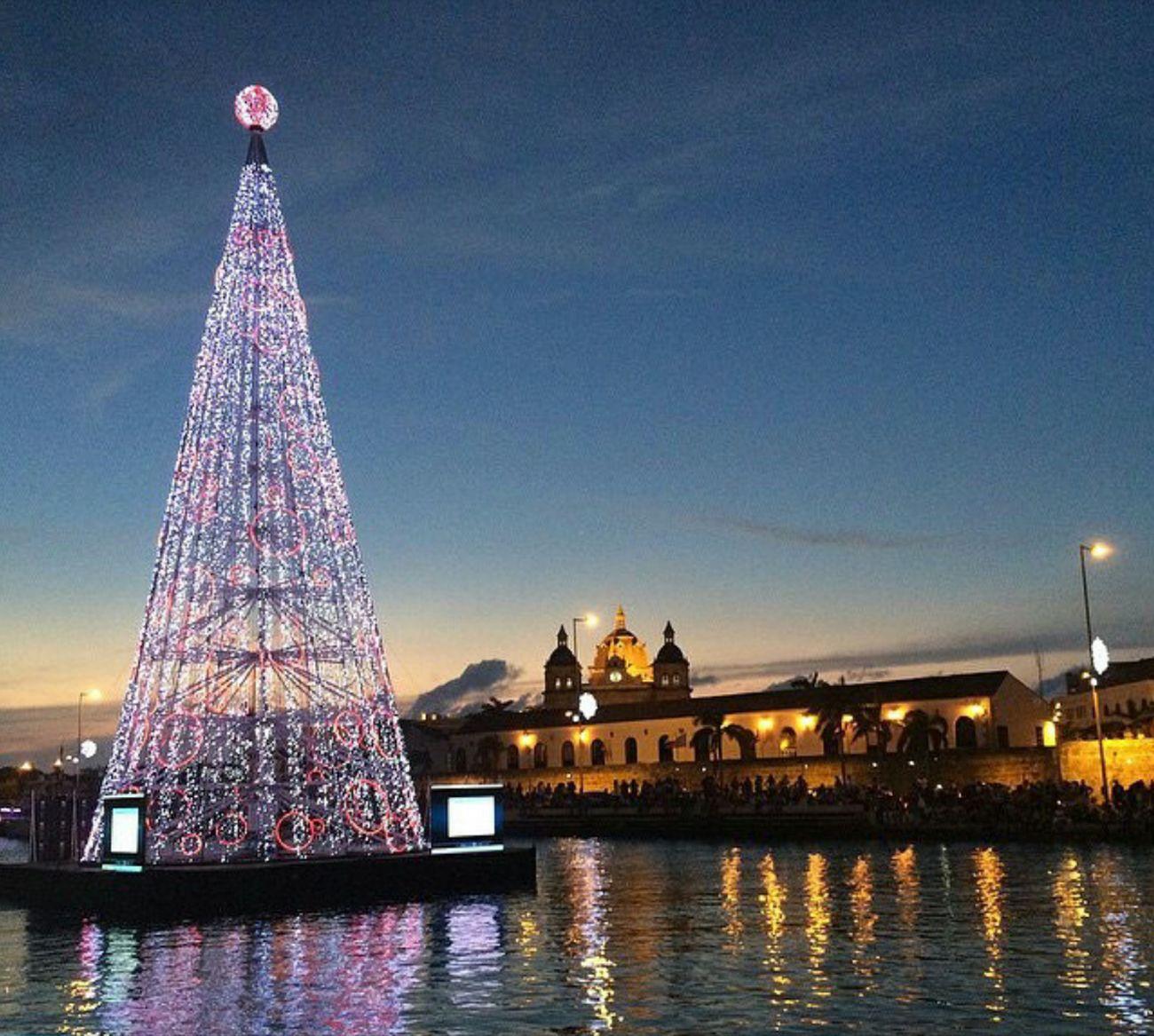 Xmas Tree Xmas Lights  Happyxmas Happy Holidays!