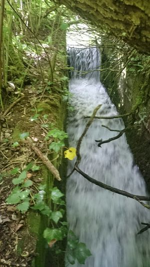 Water Sluice